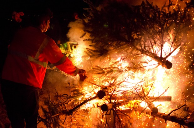 adjusting the trees in the fire